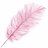 """Ostrich Drab Feathers 14-16"""" Premium Quality Baby Pink"""
